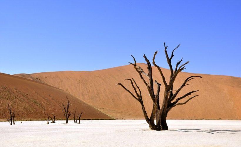 1 namibia
